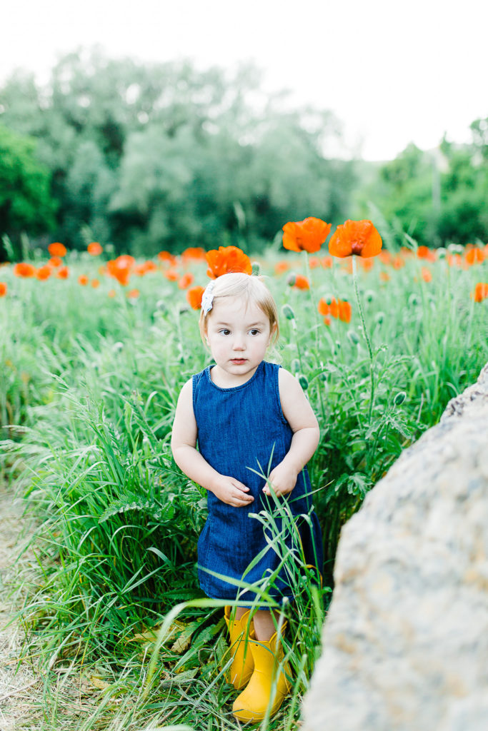 Bell Family | Mantua Poppy Fields | Utah Family Photographer