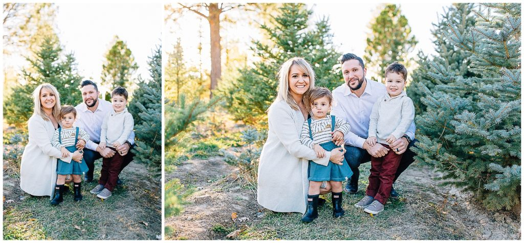 Baird   Tree Farm Pictures   Utah Family Photographer