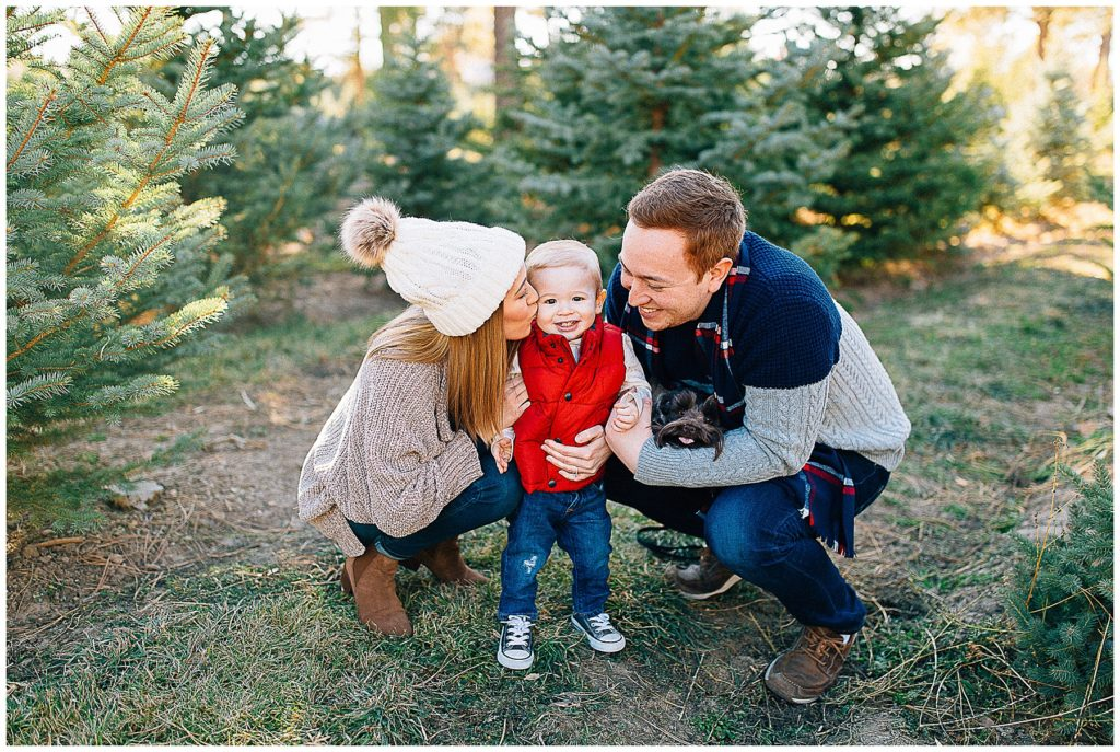 Christmas Tree Farm Mini Sessions.Mcnees Christmas Mini Sessions At A Tree Farm Truly